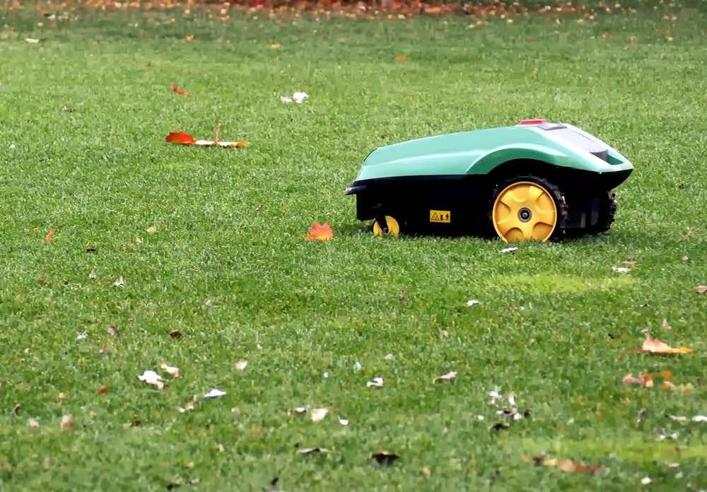 Robot grasmaaier aan het maaien tussen herfst bladeren
